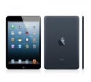 iPad Mini 2 16GB Wifi Cellular